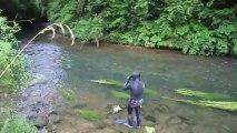 Plongée en rivière avec les truites - clerget blog