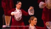 Retour sur le gala des ballets de Vendée Daily