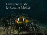 plongée sur le Rosalie Moller