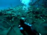 Une rivière sous l'eau au Mexique - phénomène impressionnant!
