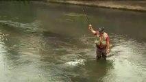 Au fil de l'eau : la Touques : pêche à la truite de mer en rivière
