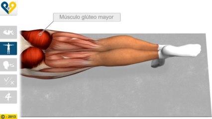 Leg Pull Down (Estabilización con elevación de la pierna)