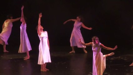 Danse contemporaine - Ballet NATURA