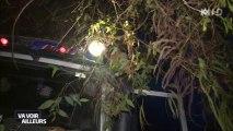 La route de la mort ou la route des Yungas en Bolivie - Une femme très effrayée par cette route !!!!!!