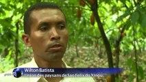En Amazonie, Sao Felix tourne la page de la déforestation