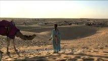 1663.Sam Sand Dunes - Camel Safari