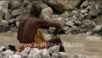 Gangotri Glacier_3-MPEG-4 800Kbps