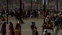 Allahabad kumbh mela-Shivratri-Shahi snan-hdc-tape-10-9
