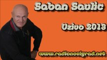Saban Saulic - Odlazis, odlazis (Uzivo 2013) HD