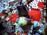 Ganesh-chaturthi-mdv-982-5