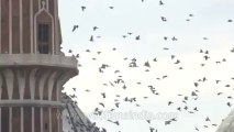 Independence day-jama masjid-1