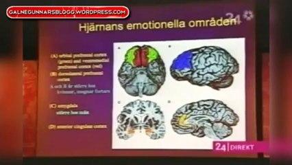 Professor Annica Dahlström om skillnader mellan den manliga och kvinnliga hjärnan