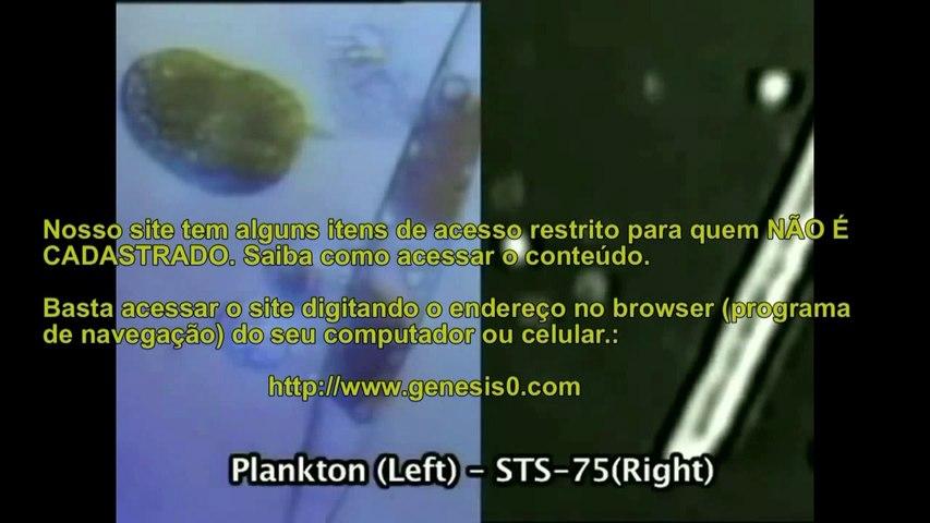 UFOs Biológicos extremófilos vida no espaço
