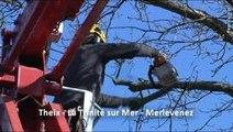 Raynal Pierre Jean SARL à Theix - Élagage, abattage Débroussaillage de vos arbres