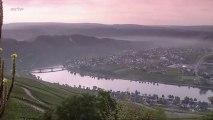 Vins à la carte - La Moselle
