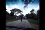 Driving in Costa Rica 01