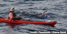 Diana Nyad Finishes Record-Breaking Cuba to Florida Swim