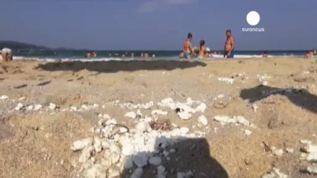 Unknown chemical washes up on Bulgarian Black Sea coast