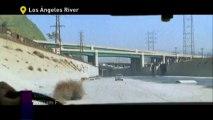 Este sitio me suena: Los Ángeles River