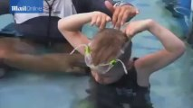 Boy who lost legs swims with dolphin with artificial flipper