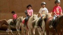 Activités sportives : Premier cours d'équitation (Vendée)