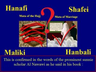 In shia mutah Questions regarding