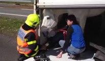 Perte de contrôle d'un camion équestre