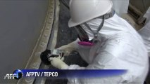 TEPCO finds high radiation in Fukushima groundwater