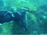 Bande annonce du film Chasse sous-marine, les leçons de l'expérience avec Gérard Ségura