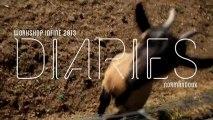 InFiné Workshop 2013 - Diaries #1