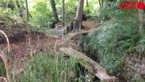 Les Trois étangs s'ouvrent aux visiteurs - Les Trois étangs s'ouvrent aux visiteurs