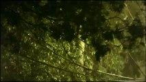 il pleut dehors -Poésie/Narration