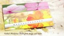 Hi Slider - Best Free Responsive Wordpress Image Sliders