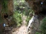 Cap Sud-Ouest - Le Causse Méjean, une île dans le ciel