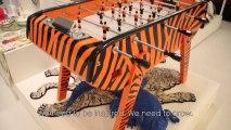 MAISON & OBJET - TENDANCES / TRENDS Automne-Hiver (FW) 13/14