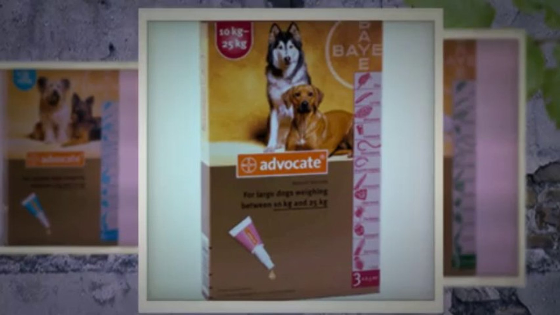 Ourpetworld Com Reviews - Our Pet World Coupon Code   Coupon Code   Discount Coupon