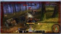 Guild wars 2 MMORPG 2012 - gameplay instance - Formation facile