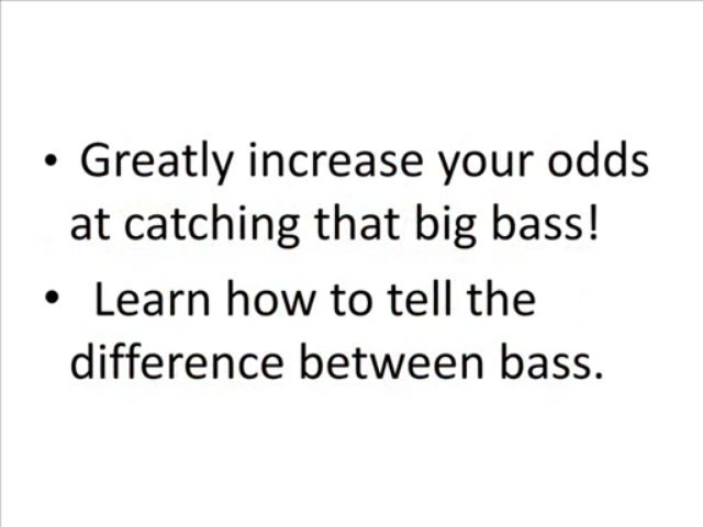 BASS FISHING secrets
