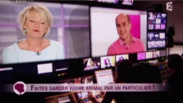 """France 2 : Garde de chien, garde de chat ou NAC : du nouveau avec l'échange et Animal Futé, reportage dans """"C'est au programme"""""""