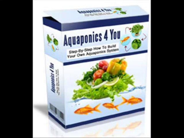 NEW Aquaponics 4 You FREE Download
