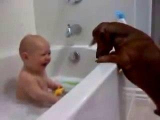 Bébé dans le bain et ses 2 amis chiens