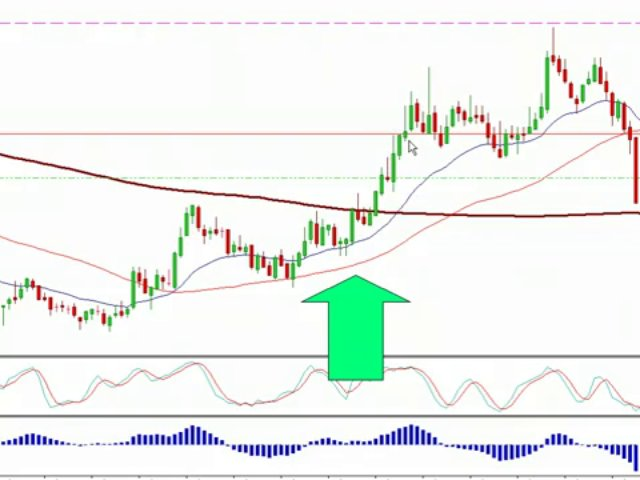 Trading Forex Live- Forex Room, Forex Signals – Forex Mentor