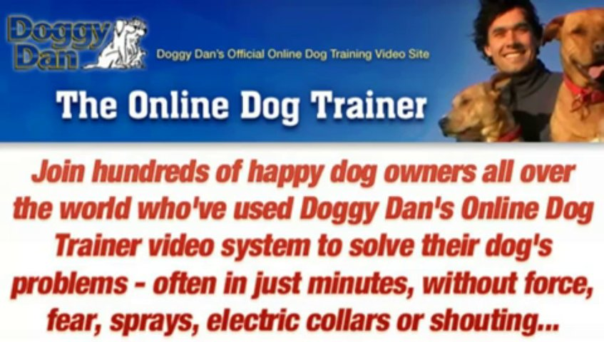 On Dog Training – The Online Dog Trainer