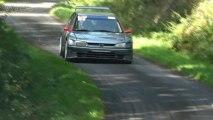 Rallye Vienne et Glane 2013 [HD] - By WTRS