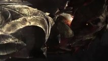 GAMEWAR.COM - Elder Scrolls Online Accounts - Trailer (3)