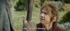 El Hobbit. La desolación de Smaug - Trailer final subtitulado en español (HD)
