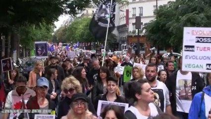 Marche Laissons Leur Peau Aux Animaux (05.10.2013)