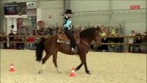 Équitation américaine – Equid Espaces 2013 – La passion du Cheval à La Roche sur Foron