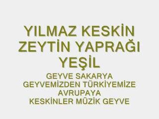 Yılmaz Keskin  Geyve ZEYTİN YAPRAĞI YEŞİL www.geyveyoresi.com zeytin yaprağı avrupa