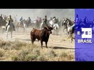 Em meio a protestos, festival de touros na Espanha reúne 50 mil pessoas